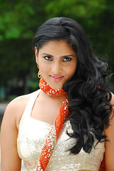 Indian Actress Ramya Hot Sexy Images Set-1 (5)