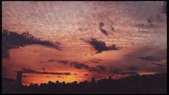 (meeeeeeeeeel) Tags: alaranjado laranja orange horizon horizonte skyline hipstamatic iphone iphoneography cores colors dusk ocaso crepúsculo twilight sunsetsky sunset clouds sky ceu