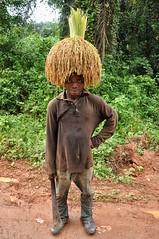 Rice man