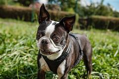 Henry smiling!