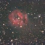 Cocoon Nebula thumbnail