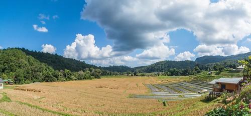 doi inthanon - thailande 36