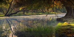 PARADISE. (NIKONIANO) Tags: landscape water agua bigfave surreal paradise paraíso naturaleza nature lago lagodecamécuaro tangancícuaro regiónzamora loslagos loslagosdemichoacán loslagosdeméxico paisajesurreal