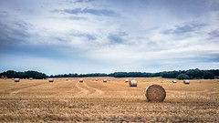Easton Hay Bales (AppleTV.1488) Tags: 5why berkshire cycleride dorset europe gbr sport uk unitedkingdom cycling easton westberkshire england eastonhill gb appletv1488 2017 august 14082017 14aug2017 14 appleiphone6s iphone6sbackcamera415mmf22 29mmfocallength35mm pm noflash landscapeapectratio f22 ¹⁄₆₄₀₀secatf22