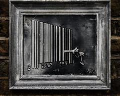 Behind Bars (Steve Taylor (Photography)) Tags: barcode picking flower kai plaster cast frame art sculpture wall black brown grey fun cool brick uk gb england greatbritain unitedkingdom london texture lines plant