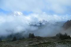 Mount Rainier from Plummer Peak (Karen Molenaar Terrell) Tags: plummerpeak hike washingtonstate mountrainiernationalpark karenmolenaarterrell trail pinnaclesaddle