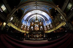 Notre Dame Bascilica (Explore 25/08/17 #85) (Sarah Marston) Tags: montreal canada fisheye samyang notredamebasilica notredame august 2017 gothic cathedral sony ilce6300