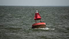 Navigational buoy on Hatteras-Ocracoke ferry route (SchuminWeb) Tags: schuminweb ben schumin web may 2017 county north carolina nc northcarolina outer banks obx outerbanks hyde estuary navigational aid aids beacon beacons buoy buoys sign signs signage ocracoke hatteras ferry system ferryboat boat boats ferries ferryboats route highway rt hwy high ways highways routes 12 inlet inlets state beach road northcarolinaferrysystem ferrysystem way hatterasinlet transport public transportation beachroad
