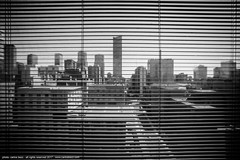 the city through the window (artland) Tags: toronto ontario canada city bw pretoebranco brancoepreto buildings photo photographers carlosbezz street cityscape window windows janela jungle janelas skycrapers artland studio cities