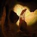Burnet - Cavern Structures