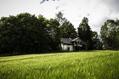 (Eliowyn Skårholen) Tags: rurex rural urbexnorway nordicurbex abandoned decay forlatt forfall