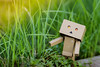 No man knows the value of innocence and integrity but he who has lost them. - William Godwin (shadman ali) Tags: danbo danboard danboardmini danbolove goldenhour green lost grass grasses dof shadman shadmanali bokeh 85mm yongnuo85mm18 yongnuo canon eos 700d t5i shadmanphotography canon700d canont5i shadmanaliphotography canoneos700d stilllife sunflare autumn dhaka bangladesh