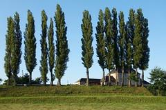 stacja kolejowa  / railway station (Marek vono) Tags: stacjakolejowa stacja drzewa budynek pociąg zalesieśląskie zachód trainstation station trees building train zalesieslaskie west