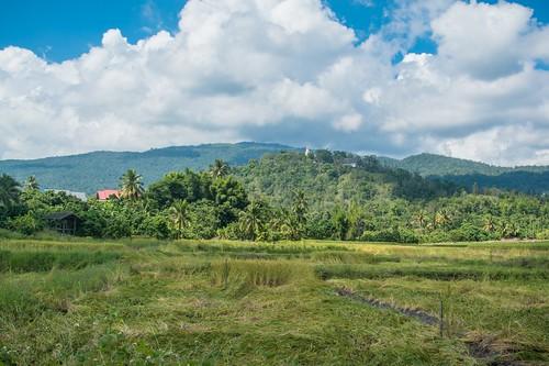doi inthanon - thailande 3