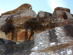 Newport formation sandstone (Poytr) Tags: barrenjoey palmbeachnsw nsw sydney rock sandstone kuringgaichasenationalpark