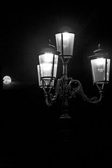The Silence of the Lamps
