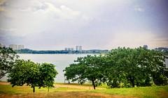 https://foursquare.com/v/tasik-presint-4-lake/4ceccf2aed62721e7e5452fd #travel #holiday #水 #water #Asia #travelMalaysia #holidayMalaysia #湖 #lake #putrajaya #旅行 #度假 #亚洲 #马来西亚旅行 #马来西亚旅行 #布城