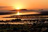 20170807SkerriesSunrise4 (John Lawlor) Tags: sunrise skerries ireland dublin fingal sea beach sun shimmer bird gull morning