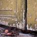 Italy - 5 Terre & Portovenere #14 (Giovanni Riccioni) Tags: 2017 50mm 5d agosto alley august canon canonef50mmf18stm canoneos5d colori colors doorway doorways estate giovanniriccioniphotography homes italia italy liguria portovenere portone portoni rosso stilllife summer uva verde vicoli vicolo grapes