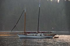 Classic Yacht (OneEighteen) Tags: sailing pacificnorthwest britishcolumbia classic yacht schooner
