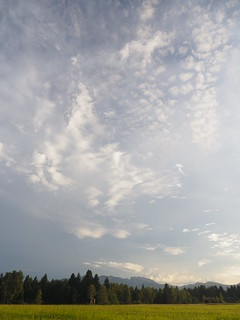 © Blue Sky Clouds Meadow Pasture Grassland Field Nature Summer Bavaria Germany Europe – Blauer Himmel Wolken Feld Natur Sommer Bayern Oberbayern