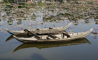 Cambodia:  Boats and Lilies