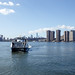 End of Summer in LIC