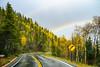 Heading down from Bear Lake - RMNP (jasonroecker) Tags: nikon d810 sigma 50mmf14 rainbow rain mountains rmnp rockymountainnationalpark road trees