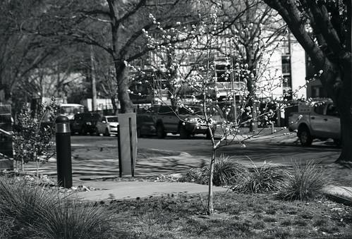 Frame 5.jpg