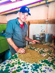 Andrew sorting through the lentils for dinner looking for pebbles.