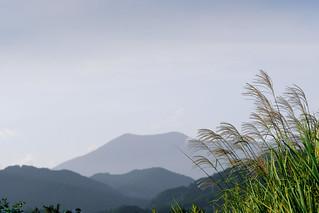 ススキと飯綱山