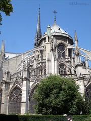 The back of the Notre Dame de Paris (eutouring) Tags: paris france notredame notre dame cathedral notredamecathedral notredamedeparis travel architecture detail gothicarchitecture