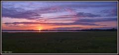 """September Gold"" ("" P@tH Im@ges "") Tags: ireland hdr pspexpx3 dusk light september marsh raw inlet coast dublin colourful picasa3"