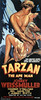 Tarzan the Ape Man (1932, USA) - 02 (kocojim) Tags: maureenosullivan illustrated kocojim poster johnnyweissmuller publishing advertising film illustration motionpicture movieposter movie