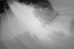 memoirs of mandu - vii (nevil zaveri (thank U for 15M views:)) Tags: zaveri india madhyapradesh trees monochrome blackandwhite bw motionblur conceptual photography photographer images photos blog stockimages photograph photographs nevil nevilzaveri stock photo fineart abstract tomb maqbara ruins architecture heritage islamic afghan monsoon wind monument longexposure artburt02