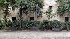 El tiempo pasa y las cosas cambian / Time passes and things change (Antonio López-Torres Sánchez) Tags: parquedellaberintodehorta parcdellaberintdhorta parque park barcelona laberinto labyrinth árbol tree