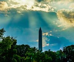 2017.09.17 DC People and Places Washington, DC USA 8818