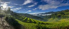 37301578805_03b9061ee9_o (thanhhai_1989_gtvt) Tags: lapántẩn yênbái vietnam vn