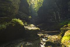 Watkins Glen (Matt Champlin) Tags: weekend sundayfunday sunday glen mist watkinsglen gorge amazing beautiful hike hiking canon 2017 incredible peaceful nature waterfall ny usa