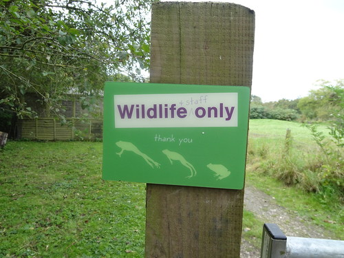 Wildlife Only