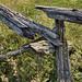 The Fence (gabi-h) Tags: cedarrailfence princeedwardcounty gabih vintage texture princeedwardpoint wildflowers