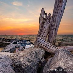 Weathered Logs at Sunset (Patrick604 Pictures) Tags: 2017 bigred holland lakemichigan michigan blue brown driftwood logs orange rocks sky sunset