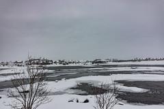 IMG_2555 (alessandro orfanù) Tags: norway lofoten vesteralen hurtigruten winter snow northernlight
