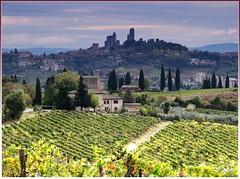San Gimignano (Jolivillage) Tags: jolivillage village borgo pueblo sangimignano toscane tuscany toscana italie italia italy europe europa paysage paesaggio landscape vignes vignoble picturesque geotagged