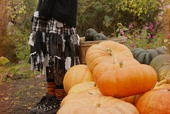 HelloOctober (obsequies) Tags: fall autumn harvest pumpkinpatch pumpkins leaves october style fashion goth grunge dark mori kei strega diy handmade etsy obsequies orange squash cinderella heirloom fairytale garden homestead magic whimsy whimsical homegrown bokeh nature earthy green life seasons cottage shabby chic canada canadian sweater weather currentmoodboots boots minifarm dirt color colour woodland forest yard artsy fartsy create