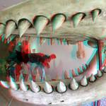 Leviathan Natuurhistorisch museum Rotterdam thumbnail