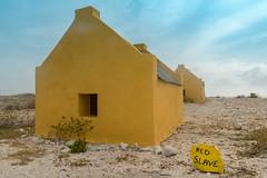 Bonaire Red Slave Huts Dive Site