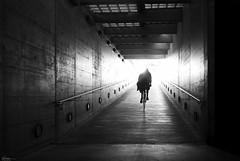 Drive into the morning (René Mollet) Tags: morning earlymorning sunrise bicycle drive silhouette streetart station shadow streetphotography street urban urbanstreet urbanlife blackandwhite monochromphotographie renémollet