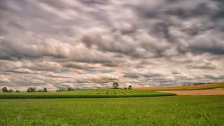 field 1.)-1706