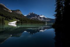 Emerald Lake (mgirard011) Tags: field britishcolumbia canada ca 200faves